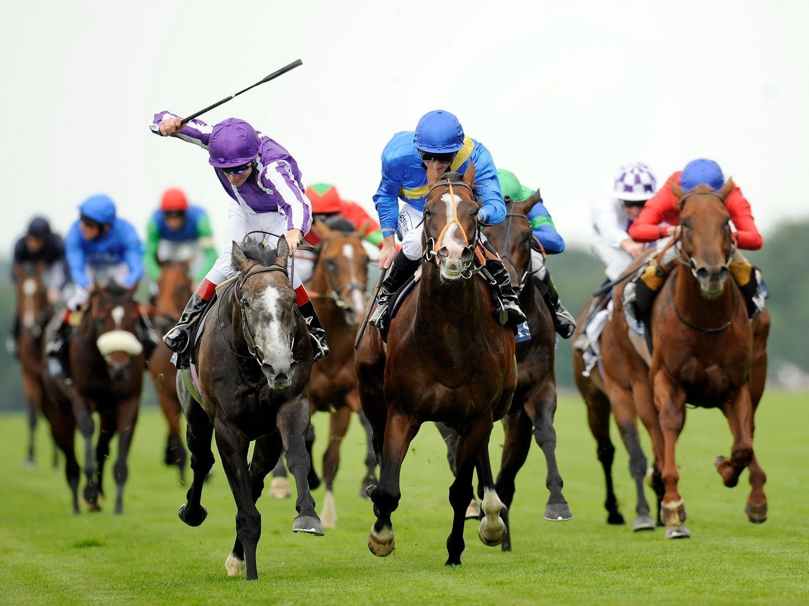Exciting race action in the final furlongs!