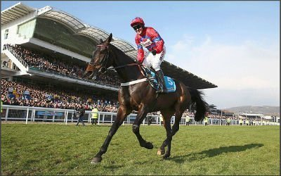 Sprinting Sacre during his victorious run at Cheltenham Festival 2013