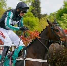 Altior Set To Dominate In Tingle Creek Seasonal Bow
