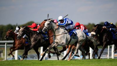 thundering blue winning at sandown.jpg