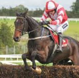 Total Recall and Tiger Roll looking to add Grand National glory for Mullins and Elliot